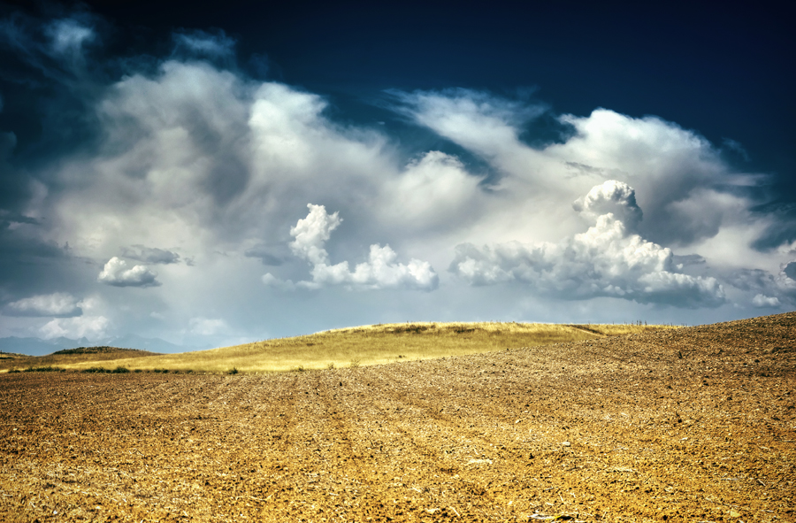 Field with Clouds