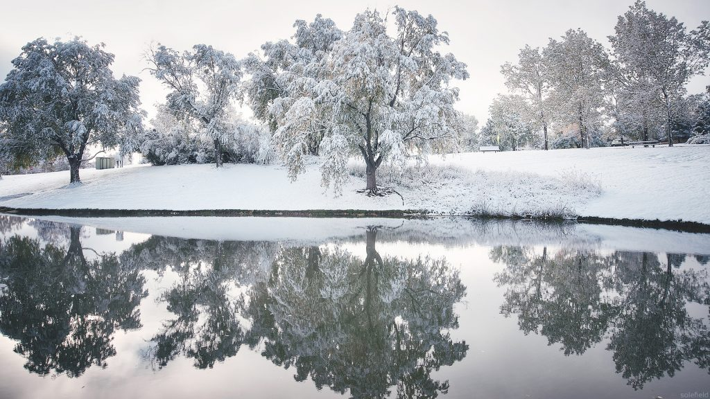 Winter Snowy reflection