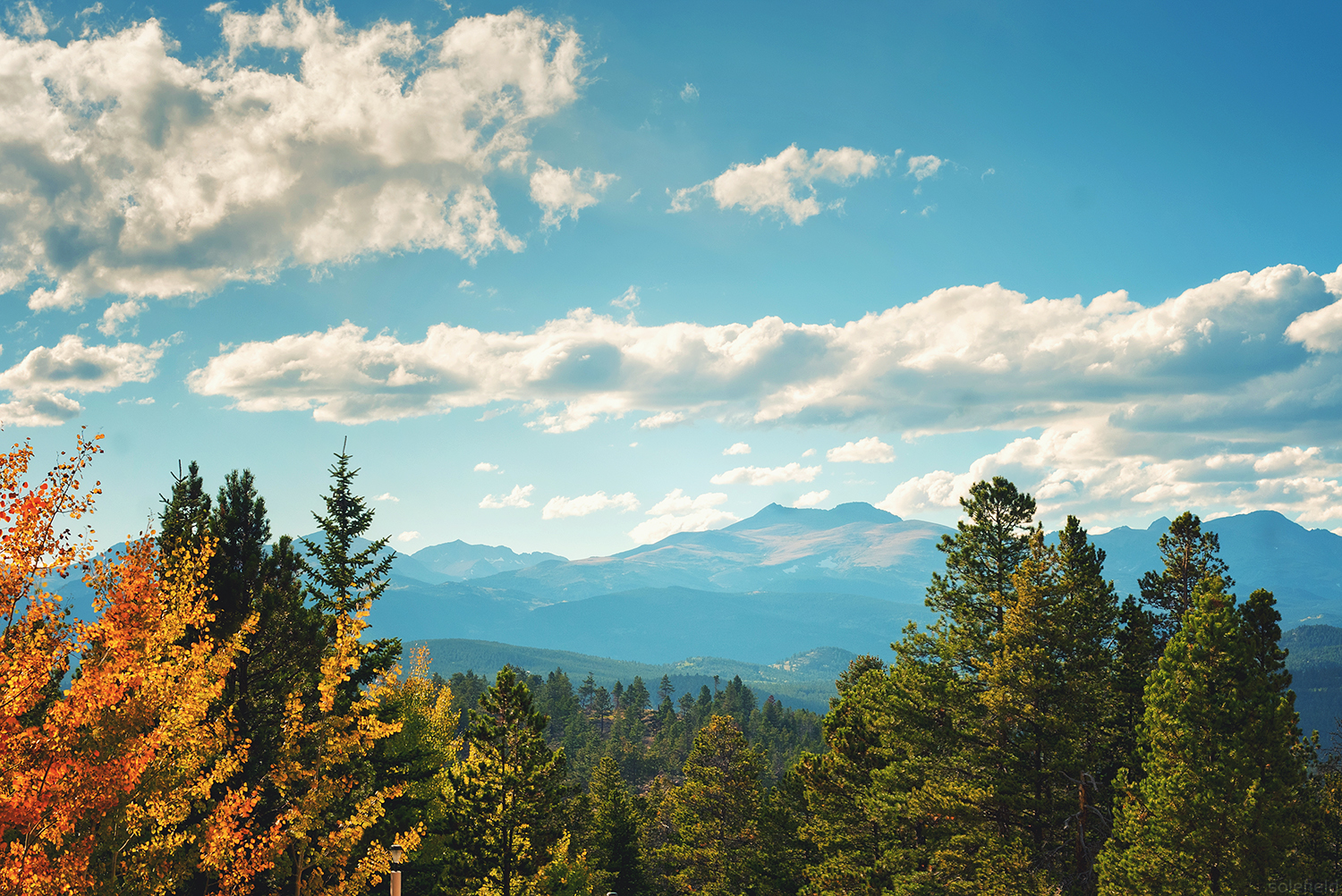 Fall Scene in Colorado overlooking mountains