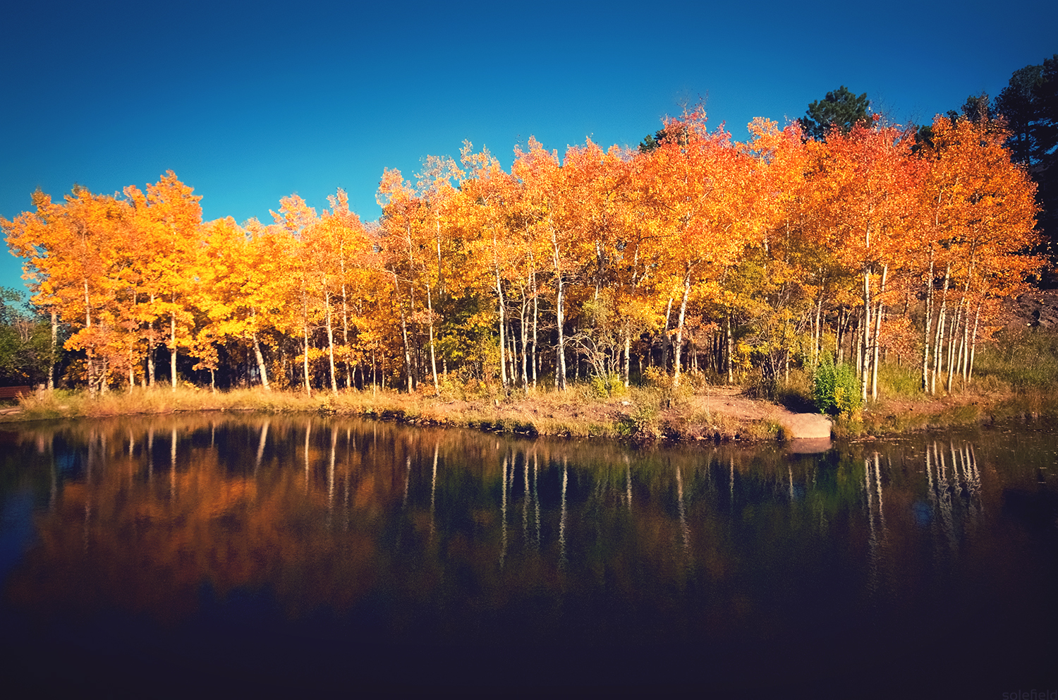 Colorado Fall Reflections
