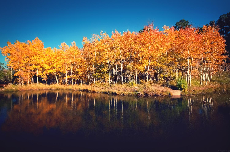 Colorado Fall Reflections