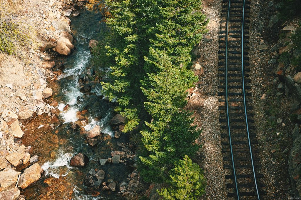 Railroad and pine trees from above