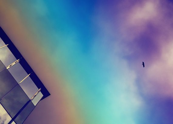 Surreal Sky with Bird